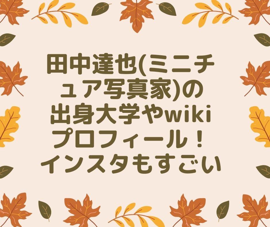 田中達也 ミニチュア wiki 出身
